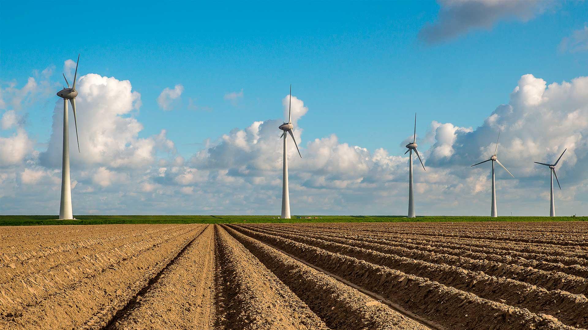 Fundo de Inovação: primeira call para projetos de energia limpa